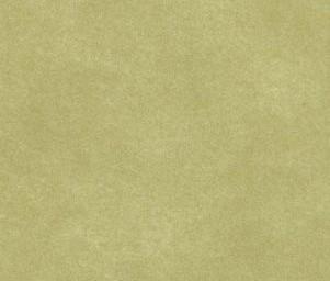 Glimmer 1922/651