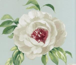 Peony Garden 1602/284