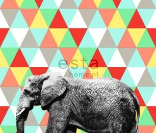 Фотообои Elephant Multi 158707