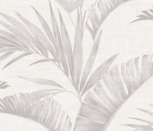 Banana Palm 610600