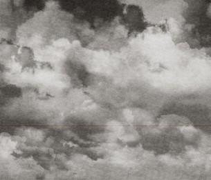 Дигитальные обои Ceu Patchouli BLD-201309