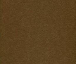 Wunderkammer 346-346610
