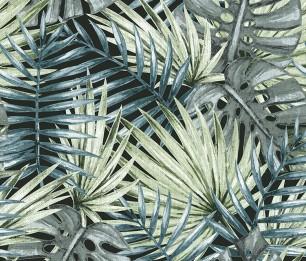 Fan Palm 1051-1