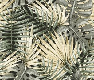 Fan Palm 1051-2