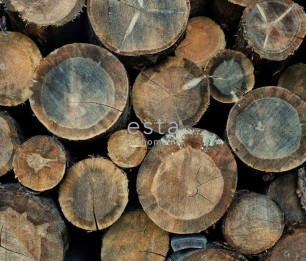 Photowall XL Wood Logs 158206