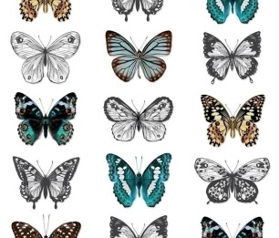 Wallpaper XXL Butterflies 158507