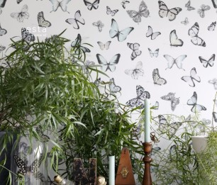 Greenhouse 143-138875