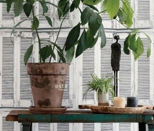 Greenhouse 143-138882