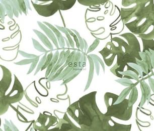 Greenhouse 143-138888