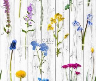 Tapeet XXL Wild Flowers on Wood 158828