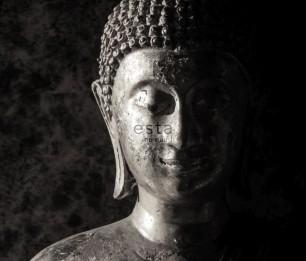 Фотообои XL Buddha 158823