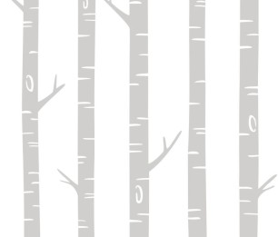 Фотообои XL Birch trees grey 158924